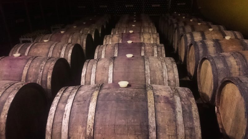 Wine casks in Kindzmarauli Wine Factory